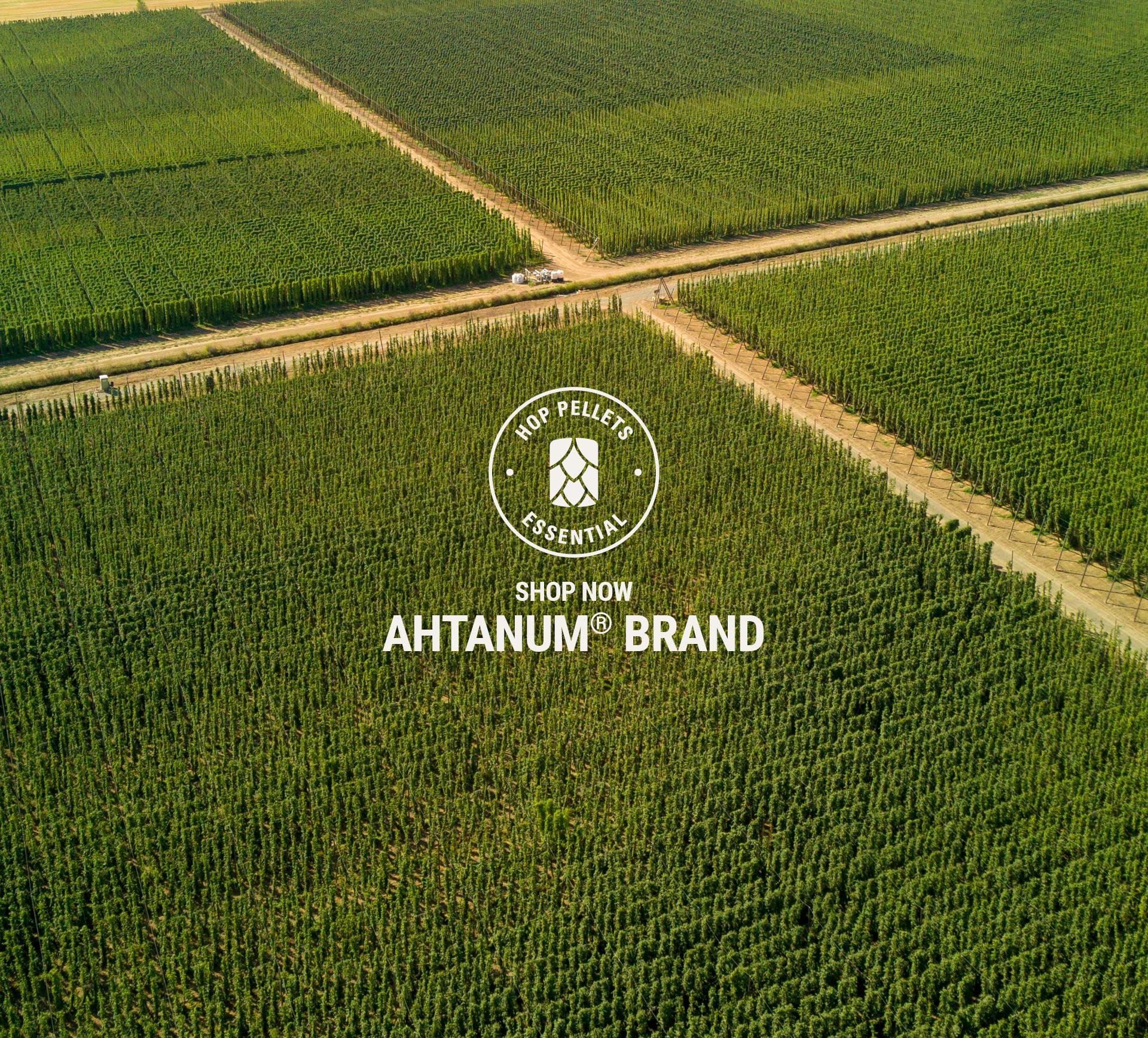 Shop Ahtanum Hops